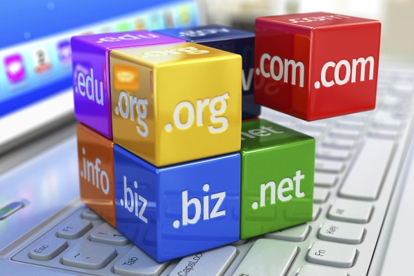 Domain Names with Gecko Websites