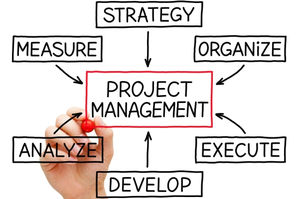 Project Management with Gecko Websites